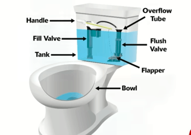 toilet bowl and how it works